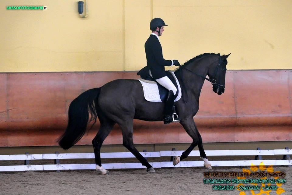 Euro Horse Sport Horses, non solo salto