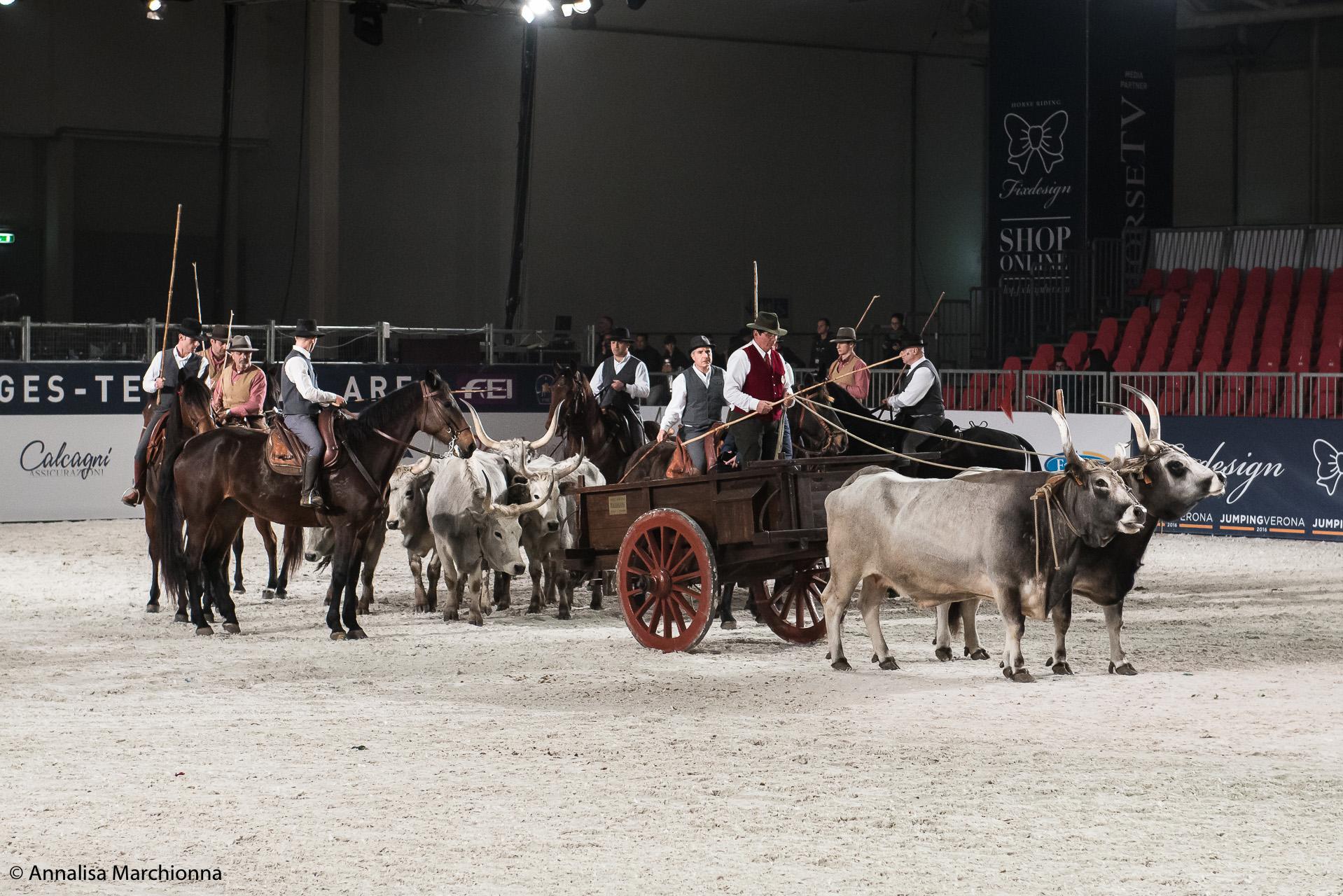Cavalli A Roma, Salone del Cavallo e dell'Equitazione