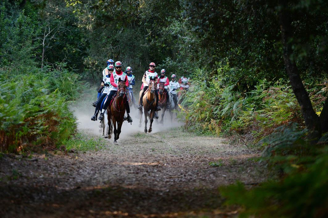 Toscana Endurance Lifestyle: diminuiscono le emissioni, aumentano i punti acqua. Parola d'ordine, rispetto per l'ecosistema e per il benessere animale