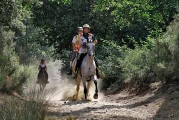 Pisa chiama Tryon: Toscana Endurance Lifestyle, trampolino di lancio per i  FEI World Equestrian Games 2018