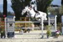 Horses Le Lame: la stagione parte con il salto ostacoli e anticipa Tokyo 2020